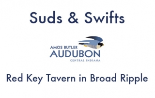 Sud and Swifts at Red Key Tavern